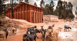 The library of Muyinga   BC architects