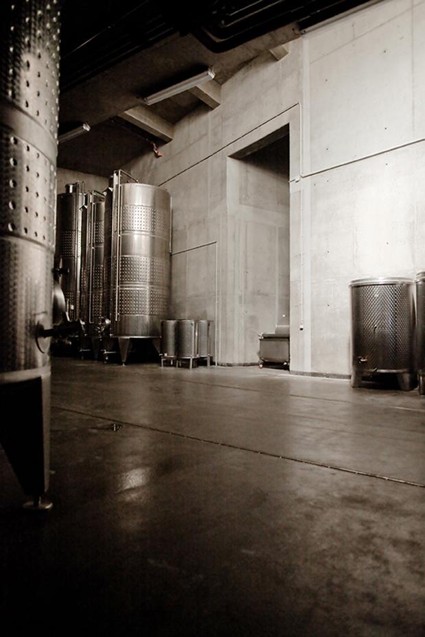 Bazaltbor winery, Badacsony - PLANT Atelier Peter Kis_06