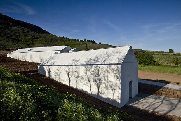 Bazaltbor winery, Badacsony – PLANT Atelier Peter Kis